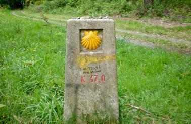 The scallop shell is the traditional symbol of the Camino de Santiago.