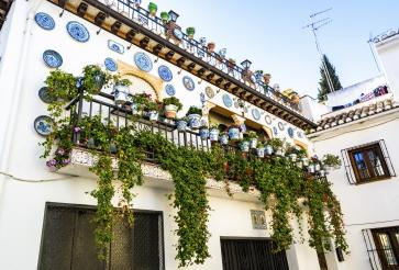 White-washed homes, vibrant flowering plants and ceramic details.